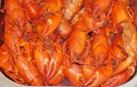 Smoked Crayfish  Large Bag 150g