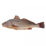 Whole Yellow Croaker Large Bag